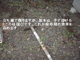f0031037_1755384.jpg