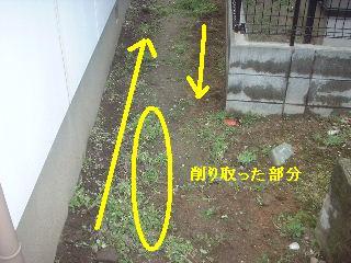 f0031037_1758819.jpg