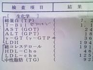 b0047941_20123284.jpg