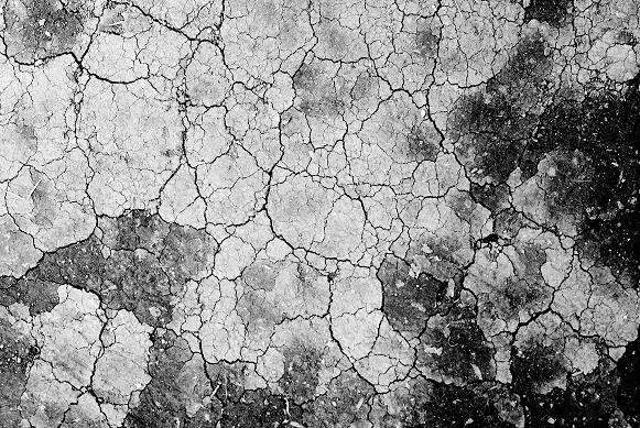 mosaic_f0155808_2353424.jpg