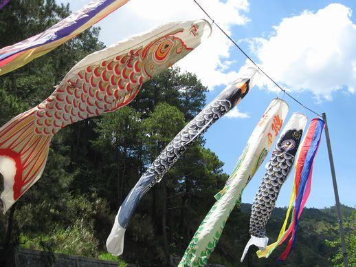 こどもの日、 鯉のぼりを 親子で作ろう! Children\'s Day 2008_a0109542_36336.jpg