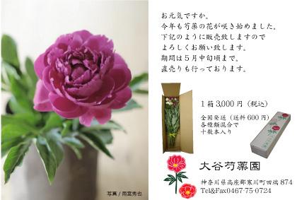 d0090047_10142354.jpg
