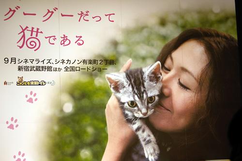 しろ娘・瞳子さんのおもちゃ遊び_d0084952_0242195.jpg