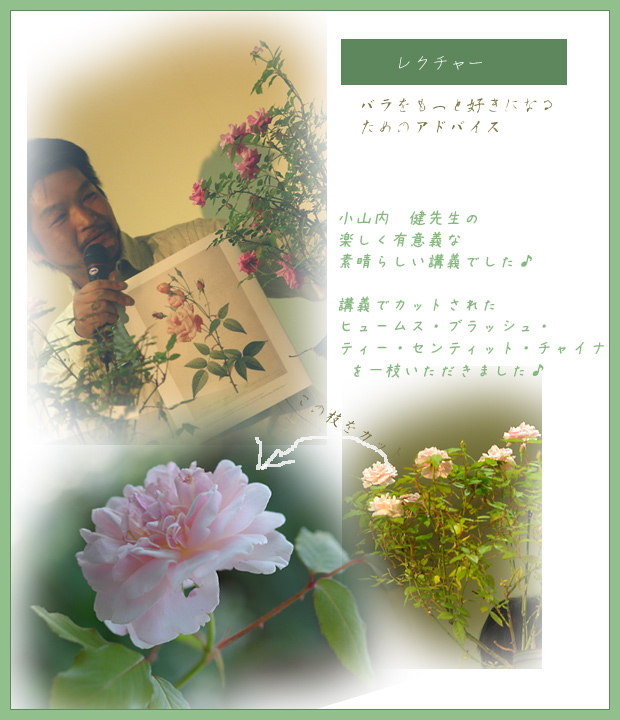 e0081973_2011944.jpg