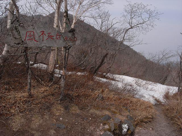 4月26日、マウンテンバイクで樽前山_f0138096_16352146.jpg