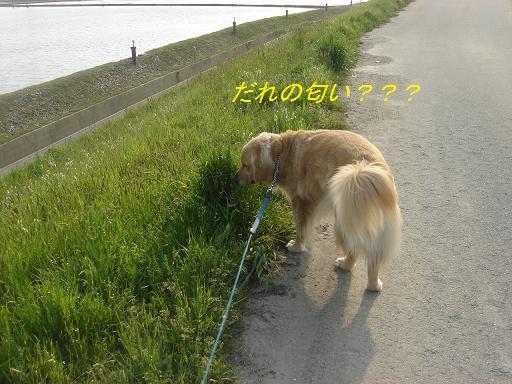 f0114128_21213377.jpg