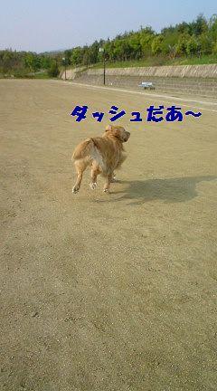 b0127531_20341755.jpg