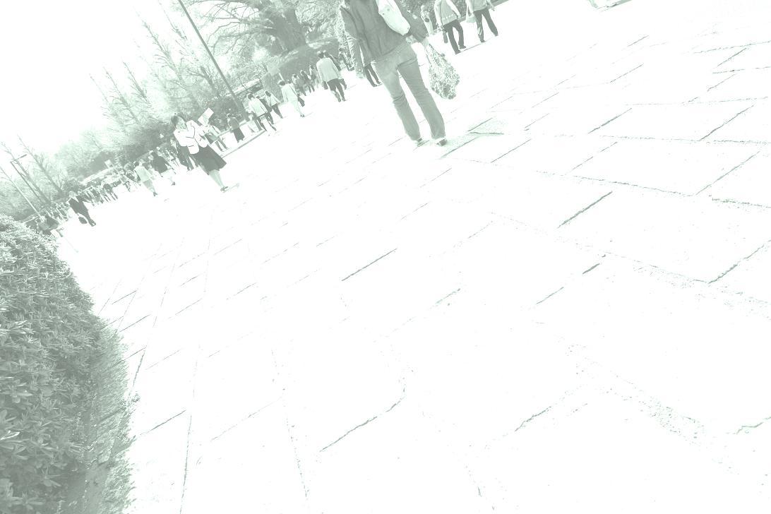f0113286_8383389.jpg