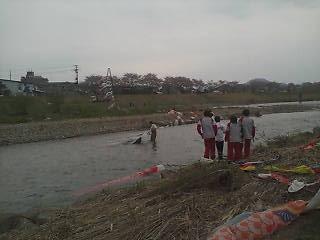 松川にたくさんの鯉のぼり泳ぐ_d0129296_9573190.jpg