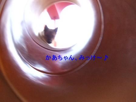 b0087400_23125254.jpg