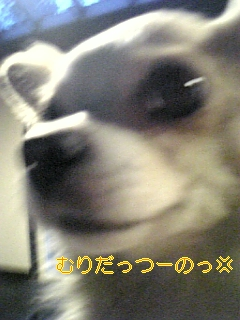 f0148927_19201622.jpg