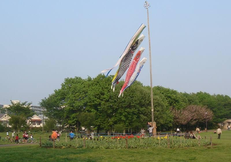 都立東村山中央公園は人も犬もいっぱい_f0059673_622459.jpg