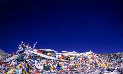 チベットに平和を!京都にて、急遽写真展やります!_e0111396_2312368.jpg