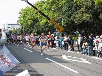 とくしまマラソン_c0035904_0166.jpg