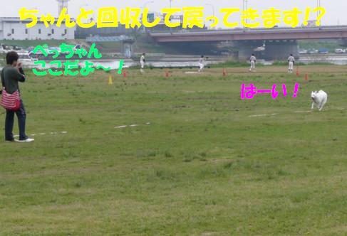 f0121712_14515732.jpg