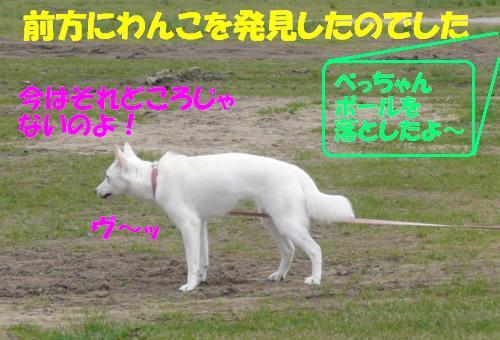 f0121712_1452128.jpg