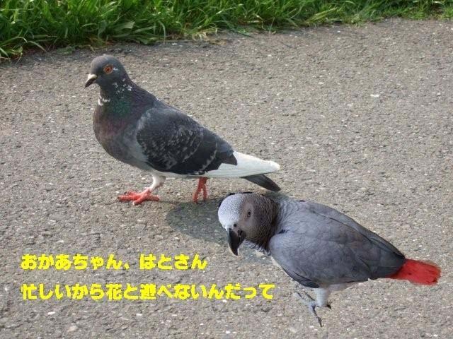 c0133013_13343683.jpg