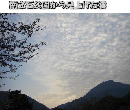 投稿) 南立石公園の樹木と花たち(1)  by:凛々_d0070316_432115.jpg