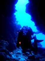 [ダイビング]南のポイントのサンゴたち_a0043520_2258142.jpg