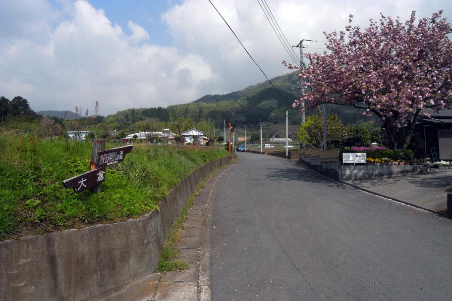 29 APR 2008 大倉~後沢乗越~鍋割山_b0023523_22362582.jpg