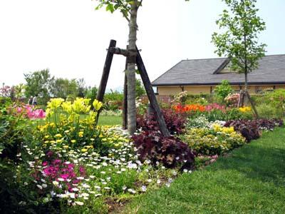 農業公園・ベルファーム_f0129726_1920417.jpg