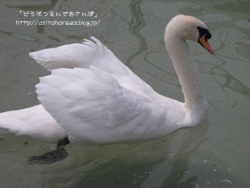 b0024758_025368.jpg