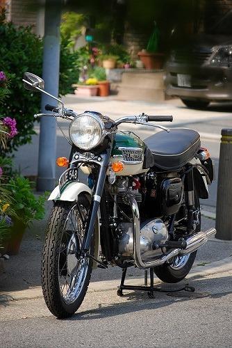 Triumph T110 (ワンテン)_f0164058_1602785.jpg