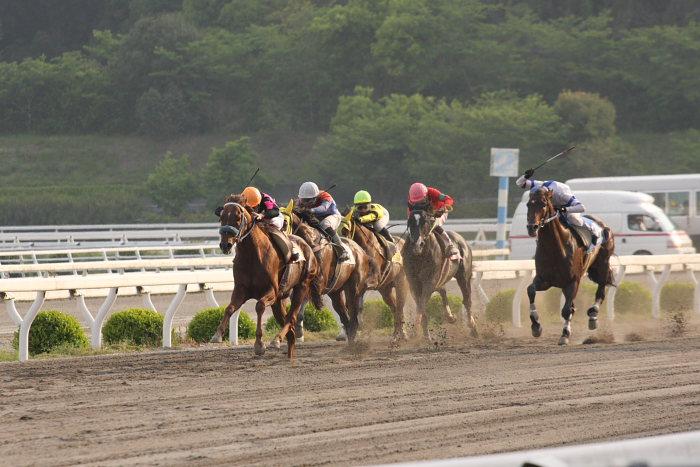 2008年4月27日(日) 高知競馬 11R_a0077663_1251984.jpg