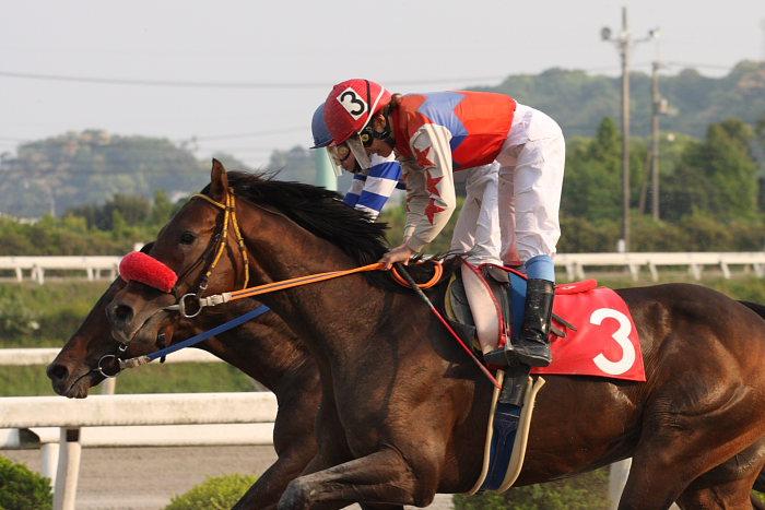 2008年4月27日(日) 高知競馬 11R_a0077663_1254699.jpg