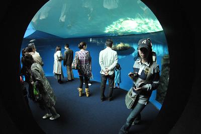 しながわ水族館 2008-04-29_c0135079_22214559.jpg