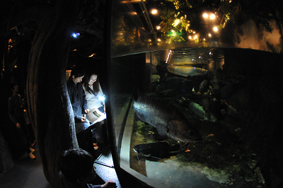 しながわ水族館 2008-04-29_c0135079_2221473.jpg