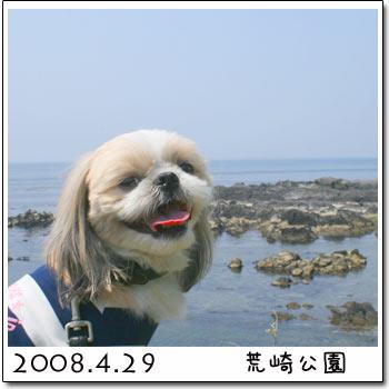 b0024183_170789.jpg