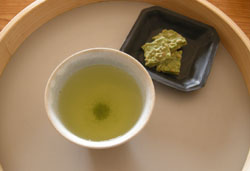 新茶 2008_f0038600_041524.jpg