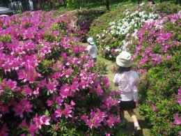 春はのんびりと_c0113733_381424.jpg