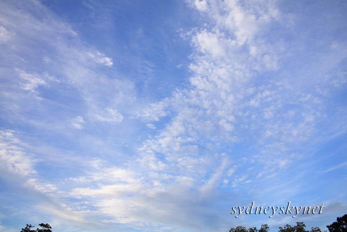 季節は秋 雲はうろこ_f0084337_2312265.jpg