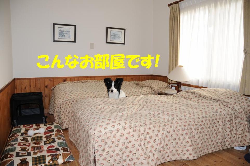 c0147241_816158.jpg