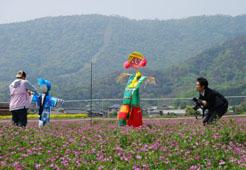 れんげ畑で_c0085543_19122757.jpg