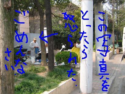 f0161151_1415984.jpg