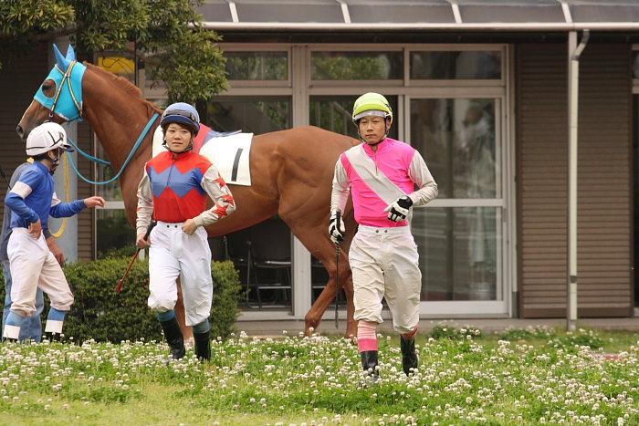 2008年4月26日(土) 高知競馬 6R その1_a0077663_18414511.jpg