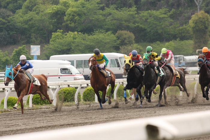 2008年4月26日(土) 高知競馬 6R その1_a0077663_18425567.jpg