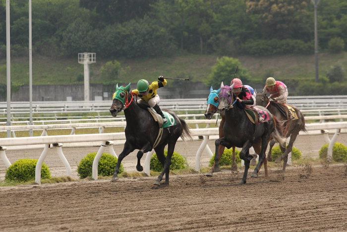 2008年4月26日(土) 高知競馬 6R その2_a0077663_19401168.jpg