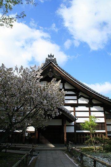 撮っておきの新緑・高台寺編①_d0030373_17572925.jpg