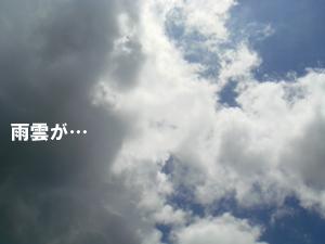 f0144385_22474513.jpg