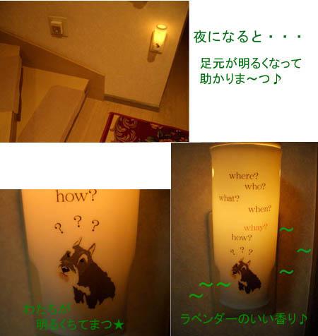 d0122187_964777.jpg