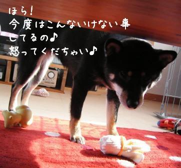 f0068501_22414279.jpg