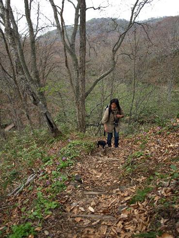 森を歩く_a0094336_11255333.jpg