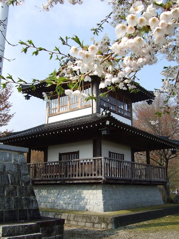 鍋倉山は、やはり桜の名所デアル 其の参_d0001843_122059.jpg