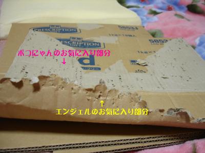 b0001465_16534156.jpg