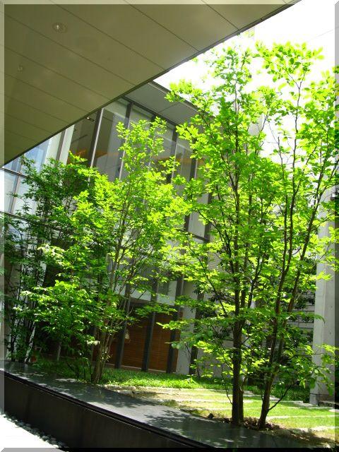 CLASSE【名古屋・矢場町】_d0112968_23114589.jpg