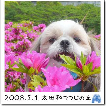 b0024183_22181536.jpg